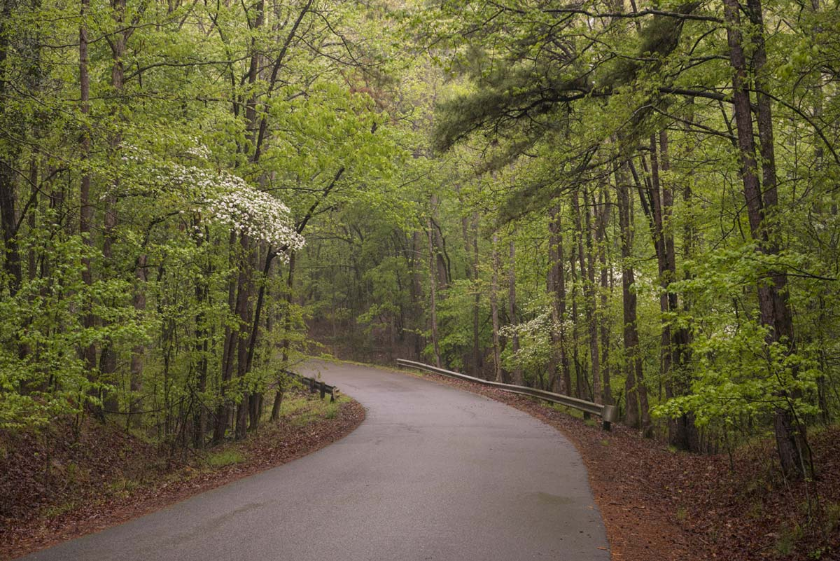 Your Spring Getaway to McCurtain County