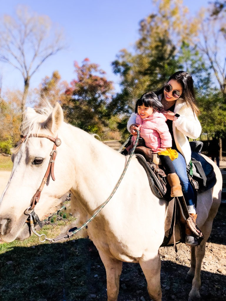Horseback Riding McCurtain County