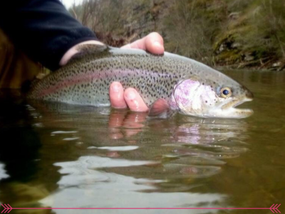 Broken Bow Fly Fish Guide Jenny
