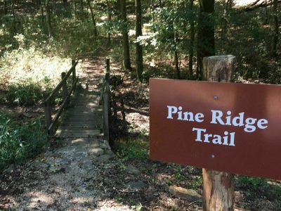 pine-ridge-trail-cover